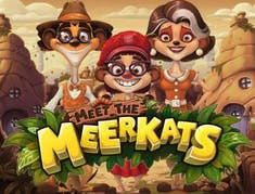 Meet the Meerkats logo