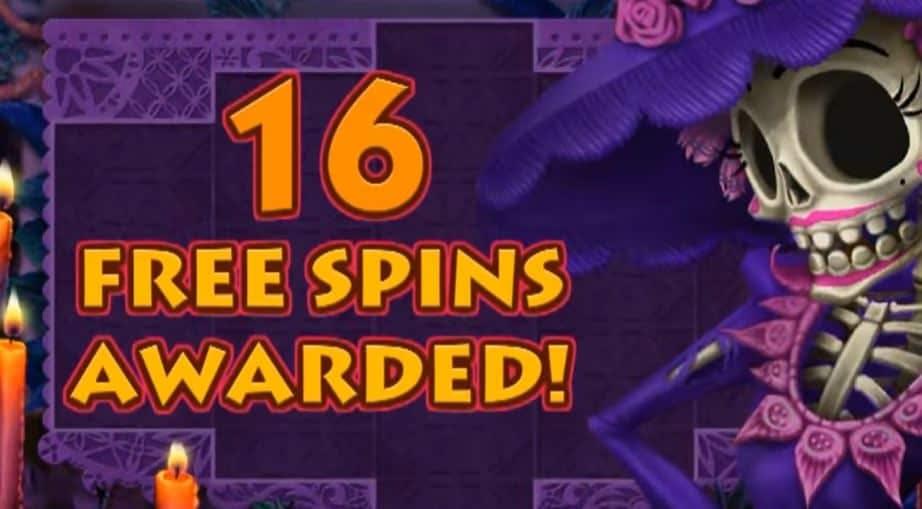 Oltre al gioco normale, a Day of the Dead hai la possibilità di vincere delle partite bonus