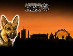 Rex logo