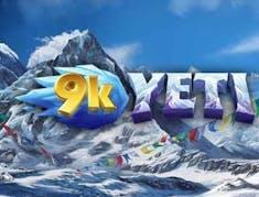 9K Yeti logo