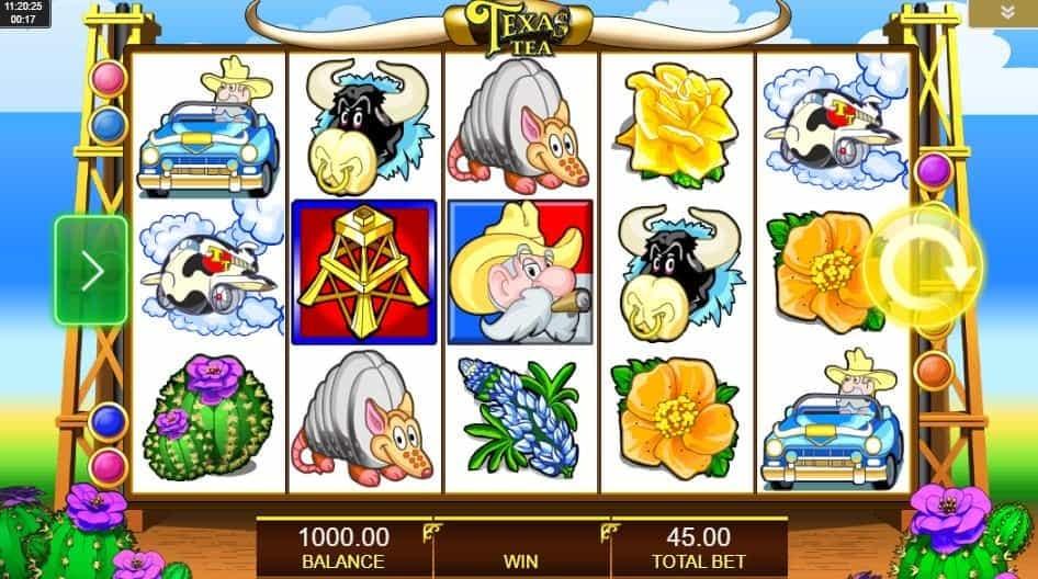 I simboli della slot online Texas Tea