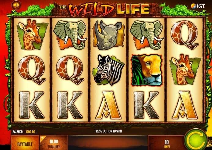 I simboli della slot online The wild life