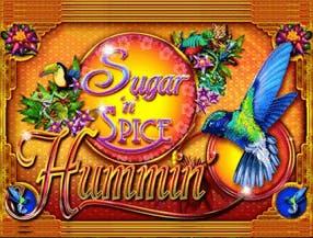 Sugar 'n' Spice Hummin'