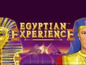 Egyptian Experience