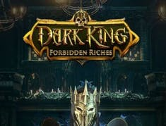 Dark King: Forbidden Riches logo