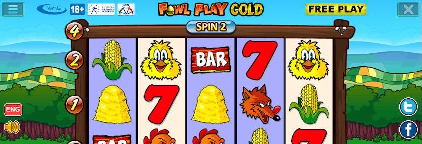 video slot machine gallina