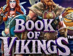 Book of Vikings logo