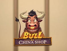 Bull in a China Shop logo