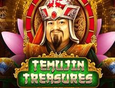 Temujin Treasures logo