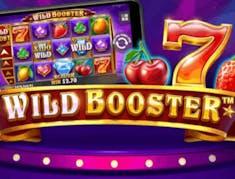 Wild Booster logo