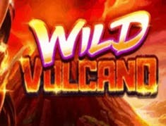 Wild Volcano logo